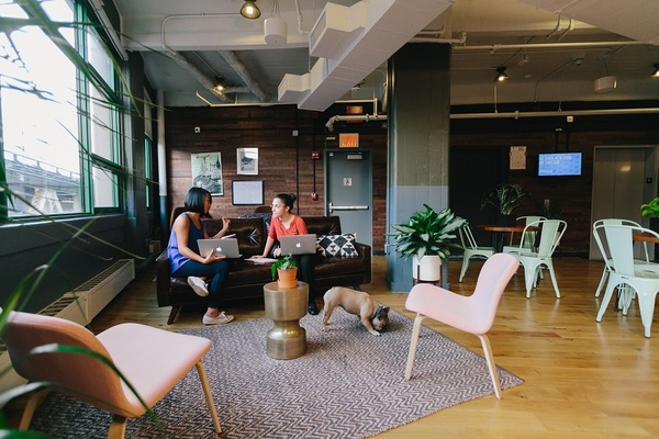 WeWork Dumbo Heights